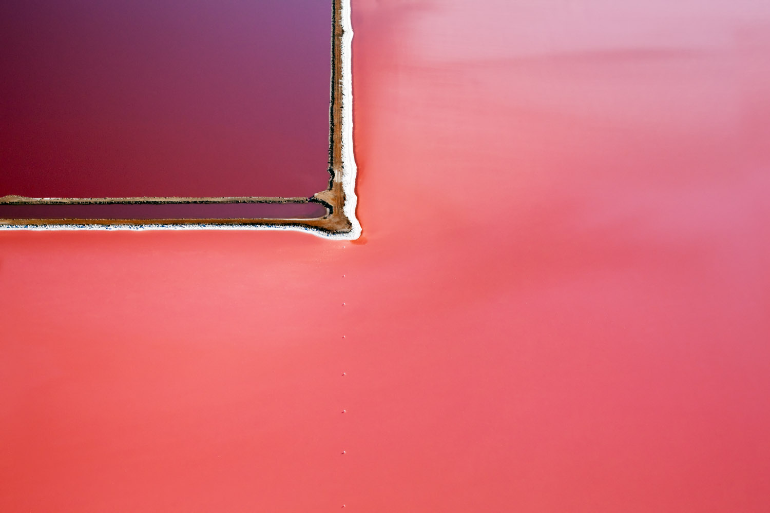 Incredible Aerial Photographs of the Hutt Lagoon by Steve Back